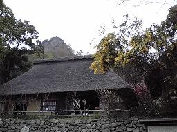 20080318.jpg