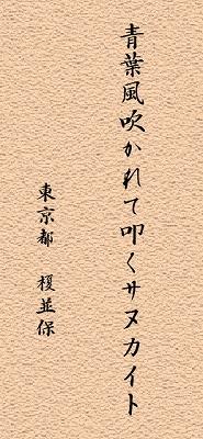 haiku3.jpg
