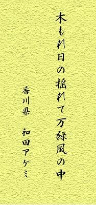 haiku4.jpg