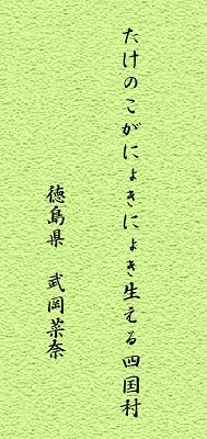 haiku6.jpg