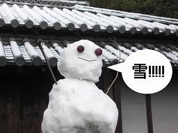 s-yuki.jpg